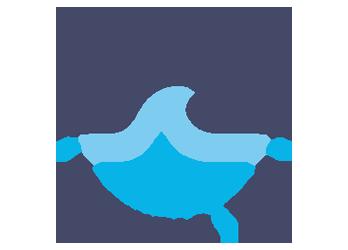 DNO Surf Team